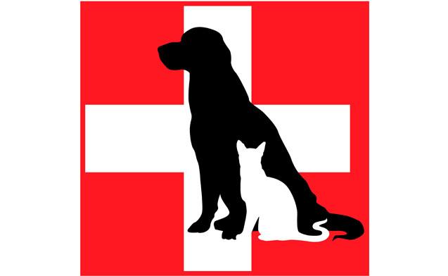 Servizio veterinario: reperibilità nel mese di agosto