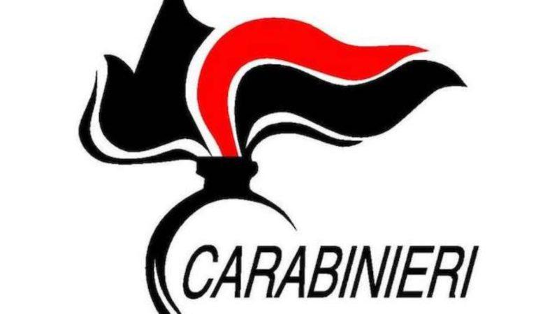 Attività di sostegno alla popolazione da parte dell'Arma dei Carabinieri