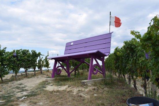 La panchina color viola